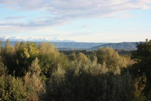 Poesie di Viaggio, Bed and breakfasts  Candia Canavese - big - 13