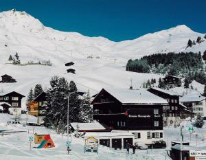 Pension Mezzaprada - Hotel - Arosa