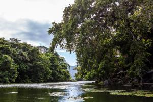 Jicaro Island Ecolodge (10 of 33)