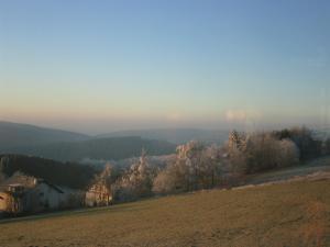Pension Lebers Schinken-Alm, Guest houses  Winterberg - big - 10