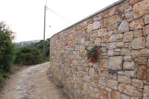 Villa Mirothea Alonissos, Villák  Alóniszosz óvárosa - big - 50