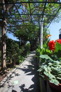 Hotel & Residence Matarese, Hotel  Ischia - big - 67