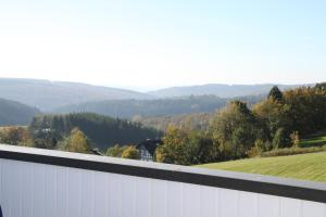Pension Lebers Schinken-Alm, Guest houses  Winterberg - big - 16