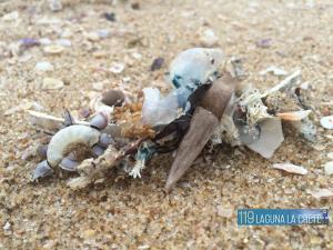 119 Laguna La Crete, Apartmanok  Uvongo Beach - big - 35