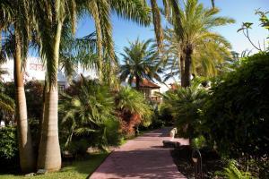 Hacienda San Jorge (31 of 40)