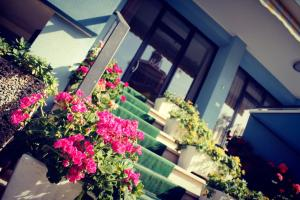 Hotel Amoha - AbcAlberghi.com