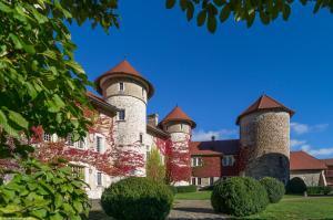 Château de Thorens - Apartment - Thorens-Glières