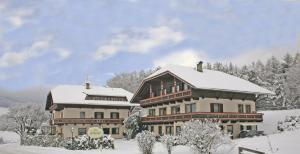 Hotel Scherer - AbcAlberghi.com