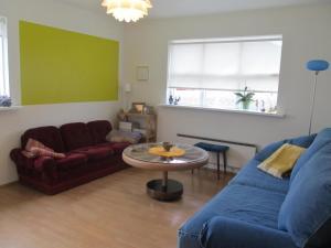 G4 Apartment, Appartamenti  Grundarfjordur - big - 16