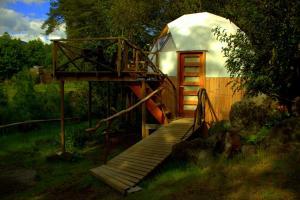 Llaimadomo Lodge, Turistaházak  Melipeuco - big - 3