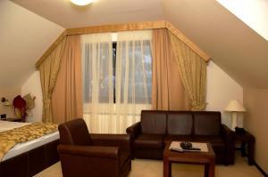 Vila Pina, Apartmány  Zlatibor - big - 14