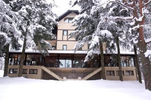 Vila Pina, Apartmány  Zlatibor - big - 21