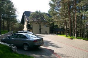 Vila Pina, Apartmány  Zlatibor - big - 27