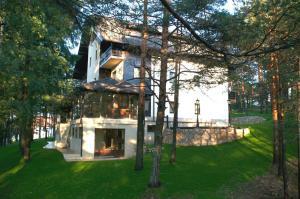 Vila Pina, Апартаменты  Златибор - big - 27