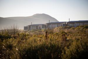 Grootbos Private Nature Reserve (22 of 50)