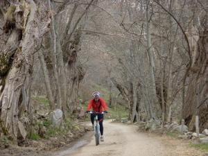 Casa Rural Cal Rei, Country houses  Lles - big - 28