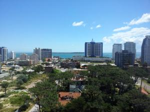 Luminoso Apartamento en Aidy Grill, Apartments  Punta del Este - big - 16