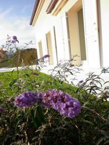 Le Perelle Agriturismo, Vily  Sassoferrato - big - 66