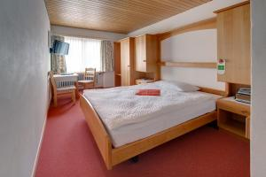 Hotel Parnass, Отели  Церматт - big - 5