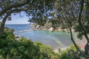 Beachfront Enclosure Bay - Waiheke Unlimited, Dovolenkové domy  Oneroa - big - 49
