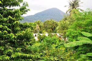 Jungle Garden Bungalows - Ban Madua Wan