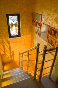 Apartments Josipovic, Appartamenti  Zlatibor - big - 18