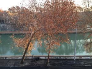 Over The Tiber Loft