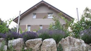 Dom Vita Sticna