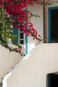 Andros Maisonettes Andros Greece