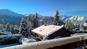 Rodasia - Apartment - Verbier