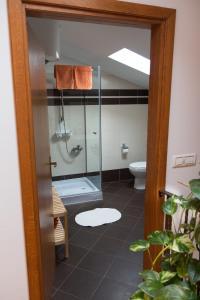 Apartment Stancija Rosello, Appartamenti  Novigrad Istria - big - 53