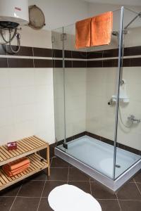 Apartment Stancija Rosello, Appartamenti  Novigrad Istria - big - 54