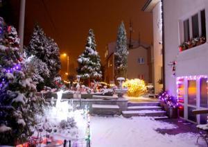 Villa Anastazis - Penzion Eden, Guest houses  Karlovy Vary - big - 161