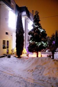 Villa Anastazis - Penzion Eden, Guest houses  Karlovy Vary - big - 101
