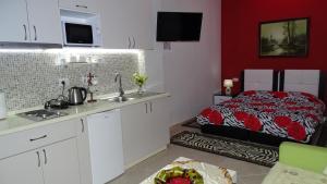 Central Apartments Shoshi, Ferienwohnungen  Tirana - big - 13