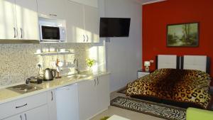 Central Apartments Shoshi, Ferienwohnungen  Tirana - big - 113