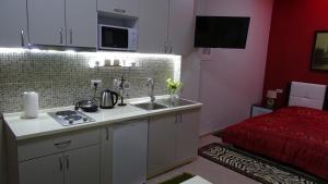 Central Apartments Shoshi, Ferienwohnungen  Tirana - big - 27