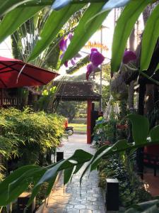 Resort La Villa Loti, Отели  Сиемреап - big - 76