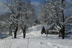 Turbaza Svetlyachok, Farmy  Gornyy - big - 19
