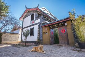 Albergues - Albergue Lijiang Baisha There International