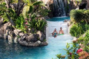Grand Wailea, A Waldorf Astoria Resort (22 of 56)