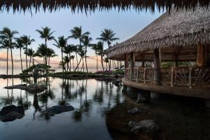 Grand Wailea, A Waldorf Astoria Resort (20 of 56)