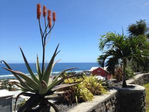 Cap Soleil, Ferienwohnungen  Saint-Leu - big - 101