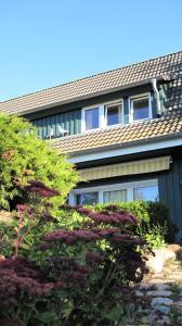 Ferienwohnungen Reetwinkel in Wieck, Appartamenti  Wieck - big - 91