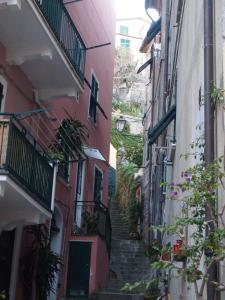Zia Letizia Bed And Wine, Penziony  Monterosso al Mare - big - 162