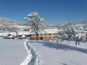 Ferienhof Schweizer, Vidéki vendégházak  Schwarzenberg im Bregenzerwald - big - 29
