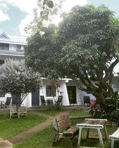 Bananaquit Apartments, Апарт-отели  Crown Point - big - 49