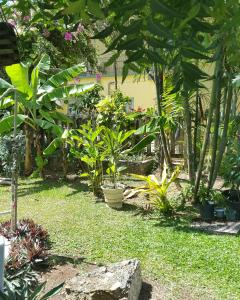 Bananaquit Apartments, Residence  Crown Point - big - 48