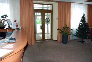 Hotel Novaya, Bed & Breakfasts  Voronezh - big - 53