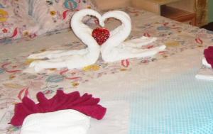 Гостиницы Абхазии, разрешающие проживание с домашними животными